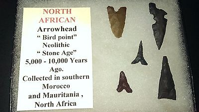 North African Arrowhead set of 5 w/case, stone age artifact, 5k-10k years old