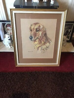 Large Framed Pastel Drawing Of A Golden Retriever