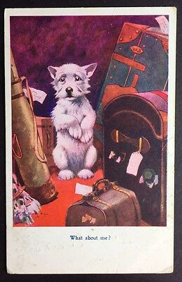 BONZO DOG POSTCARD What About Me? STUDDY RPS 1036 Luggage CASES 123