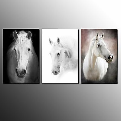 FRAMED Animal Canvas Art Print Horse Picture Poster Wall Art For Room Decor-3pcs