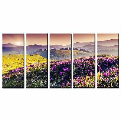 FRAMED Large Wall Art Canvas Prints Hillside Flowers Canvas Painting Poster-5pcs