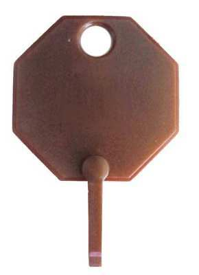 GGS_31355 Replacement Key Tag, Octagonal, PK 100