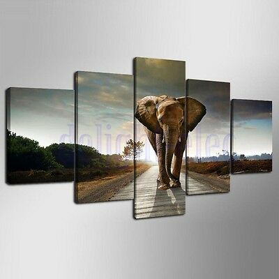 Unframed HD Canvas Print Wall Art Painting Picture Poster Home Decor Elephant DE