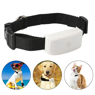 TKSTAR Pet Cat Dog Tracker Collar GPS WIFI Real Time Mini Tracking Device PS114