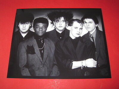 ROBERT SMITH THE CURE  10x8  inch lab-printed photo #/100