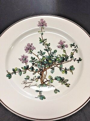 VILLEROY BOCH BOTANICA Salad Plate Thymus No Root Purple 8 1/4 Inches DF