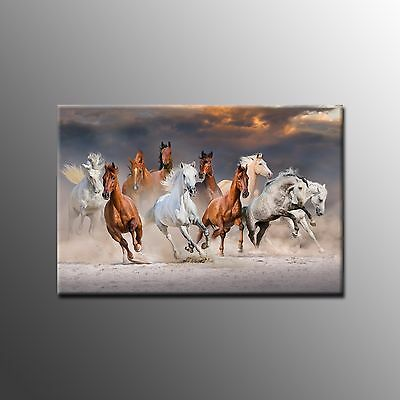 FRAMED Large Canvas Art Prints Photo Horse Wall Art Painting for Home Decor