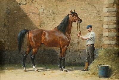 c1900~Gorgeous Bay Arabian Horse in Barn with Groom~ NEW Large Note Cards