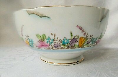 Salisbury Vintage Bone China Sugar Bowl Hand Painted Floral England