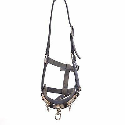 Used Shires Nylon Lunge Cavesson - Sz Horse - Purple #77978