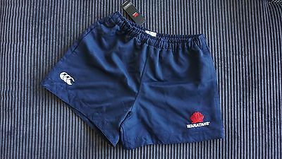 BRAND NEW Official Waratahs Rugby On Field Player Shorts Canterbury