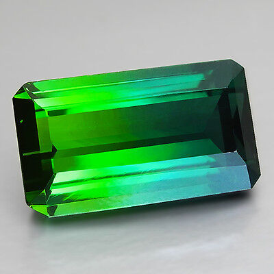 9.44Ct Wow!! Unseen Collection Natural Blue & Green Bi-Color Tourmaline(Ref Vdo)