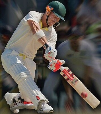 David Warner Cricket bowling machine