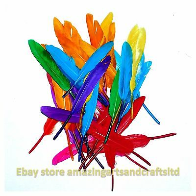 Creation Station Quill Feathers Assorted Colours
