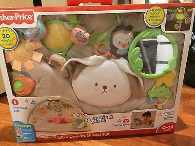 Fisher Price Ultra Comfort Musical Gym