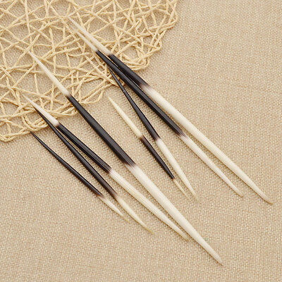 Porcupine Quills Jewelry Craft Hair Stick Arts Fishing Float Handmade DIY New