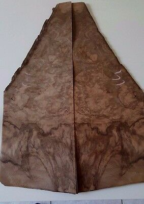 walnut burl veneer (16 sheets) guitars restorations  marquetry dashboards