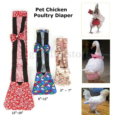 3 Sizes Cloth Pet Chicken Poultry Adjustable Diaper Style Random Easy To Use