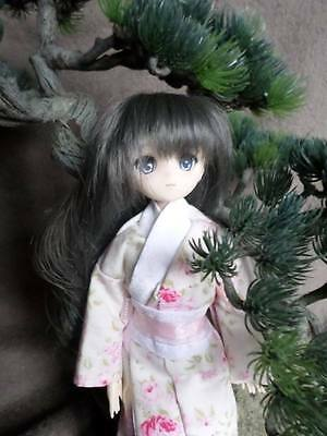 jolie doll parabox type azone , pure neemo soldé 2 jours , 2 days cheaper