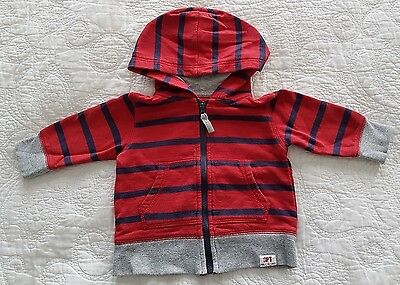 Baby Boys Sprout Zip Hoodie, Red with Navy Blue Stripes and Grey Trim, Size 0