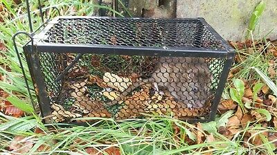 2 LARGE  Rat Catcher Spring Cage Trap Humane Live Animal Rodent collapsible