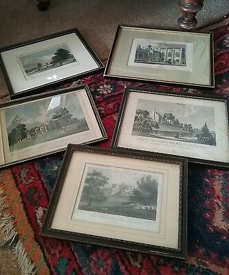 mixed set of 5 antique engravings  all in black and gilt frames good display