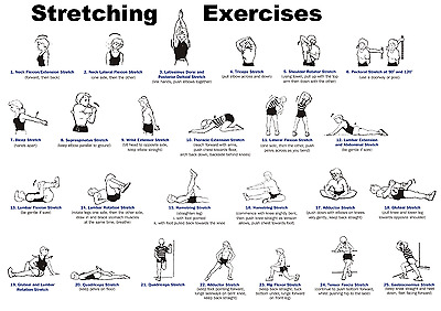 Stretching Exercises, Gym, Fitness Poster Print  A0-A1-A2-A3-A4-A5-A6-MAXI 145