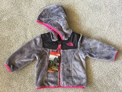 The North Face Infant Girls Oso Hoodie Metallic Silver/cab Pink Fleece Nwt $65