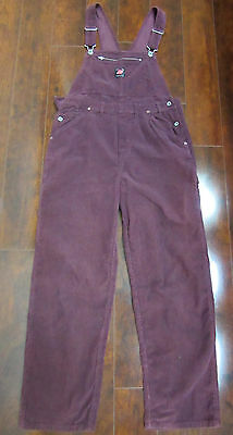 American Eagle Dungarees Workwear Women's Medium Purple Corduroy Overalls Pants
