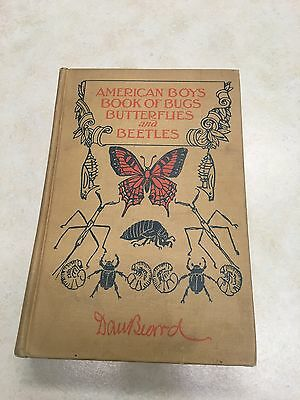American Boys Book of Bugs Butterflies and Beetles by Dan Beard