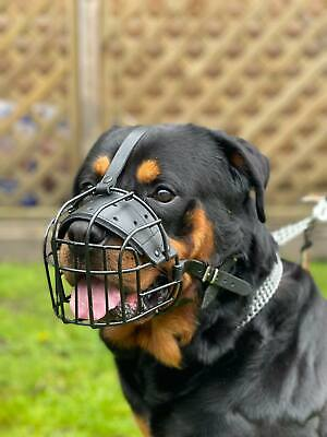 Strong Metal Winter Wire Rubber Basket Dog Muzzle Rottweiler Mastiff