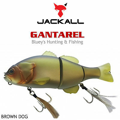 Jackall Gantarel 160mm floating segmented Cod Barra Lure;BROWN DOG