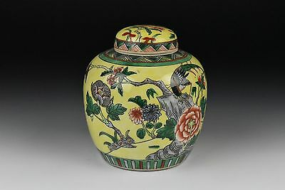 Antique Chinese Porcelain Yellow Ground Famille Jaune - Verte Covered Ginger Jar