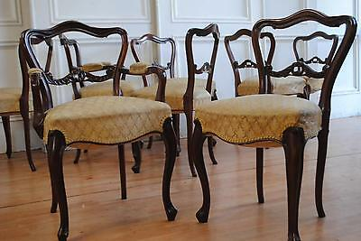 Set 8 Antique Victorian Mahogany Buckle Back Salon Dining Chairs 2 Carvers