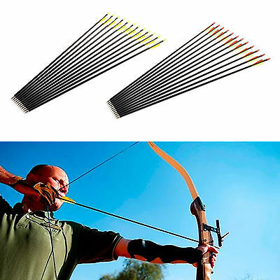 "12xFibreglass 28""/30""/32"" Archery Arrows Stainless Steel Tip For Target Practise"