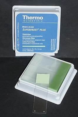 Microscope Slides Green Frosted Superfrost Plus Ground Edge 72 Pk