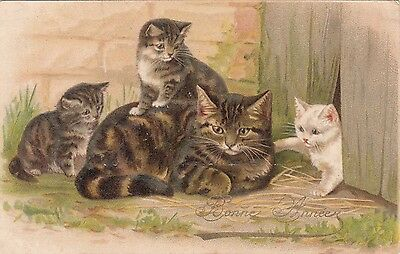 Carte ancienne CHAT et Chatons