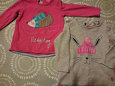 2 Joules long sleeved baby girl tops 3-6 months and 6-9 months