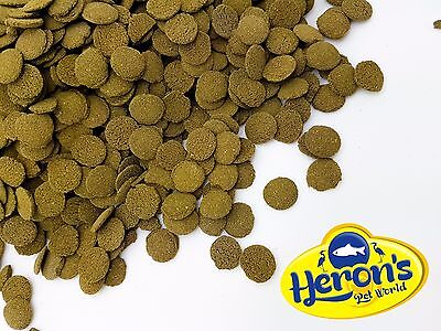 HERONS Algae Wafers PLECO BRISTLENOSE CORY SUCKERMOUTH CATFISH FISH FOOD