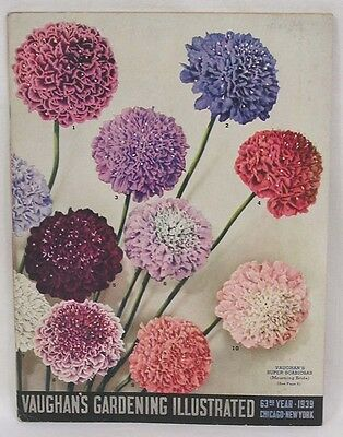 Vintage Vaughans Gardening Catalog 1939 Flowers Fruit Vegetables Color