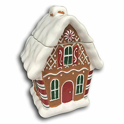 Teleflora Gingerbread House Christmas Cookie Treat Jar Flower Vase Decor Ceramic