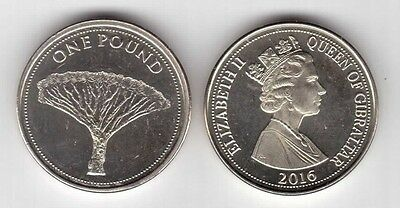 Gibraltar – New Issue 1 Pound Unc Coin 2016 Year Tree