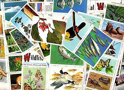 130+ Loose & Part-Sheet Seals NATIONAL WILDLIFE FEDERATION Stamps 1960s On