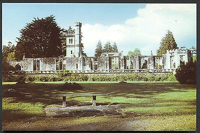 Co TYRONE POSTCARD - COOKSTOWN - DRUM MANOR FOREST PARK