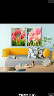 New Craft Diamond painting cross stitch  - tulip flower 5 - 40cm x 30cm