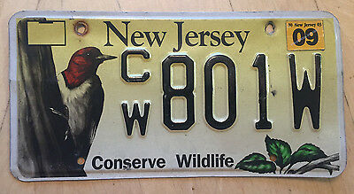 "New Jersey Conserve Wildlife License Plate "" Cw 801W "" Nj Woodpecker"
