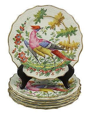 Superb Set of Six 19thC Samson French Porcelain Plates with Birds