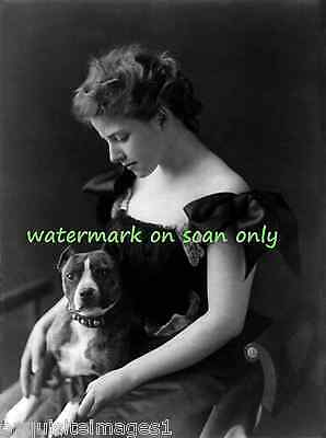 1890 B&W Photo~ PIT BULL TERRIER DOG~on Pretty Girl's Lap~ NEW Large Note Cards
