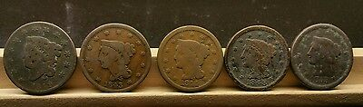 LARGE CENT coin lot of 5 US COINS