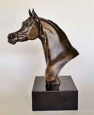 Arabian Stallion Horse Bust, Bronze Color